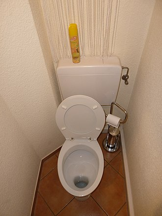 Flush toilet - A washout toilet which holds fecal matter in a shallow depression until flushed.