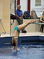 DHM Wasserspringen 1m weiblich A-Jugend (Martin Rulsch) 068.jpg