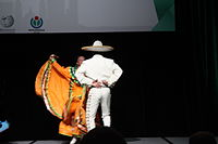 Dancing at the Wikimania 2015 Opening Ceremony IMG 7635.JPG