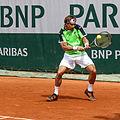 David Ferrer - Roland Garros 2013 - 002.jpg
