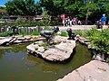 Denver Zoo 5.jpg