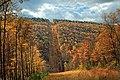 Detweiler Run Natural Area (Revisited) (4) (10544697854).jpg