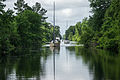 Dismal Swamp Traffic (7315898848).jpg
