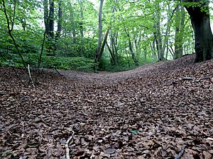Loughton Camp - Northeastern ditch