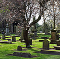 Dumferline Abbey graveyard (April 2009) - cropped.jpg