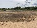 Dunes Charmes Sermoyer 8.jpg