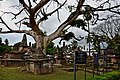 Dutch Cemetery with Tombs & Monuments.jpg