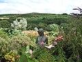 Dyffryn Fernant garden - geograph.org.uk - 209634.jpg