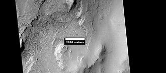 Linear ridge networks - Image: ESP 036893 1765ridgesnepenthest op
