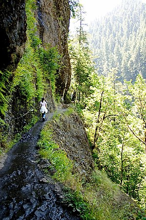 Hiking - A hiking trail in Oregon