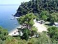 Elea Port (Plaža Zagrafou), Sitonia, Grčka - panoramio (3).jpg