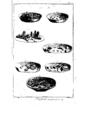 Encyclopedie volume 2b-095.png