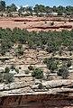 Entrada Sandstone over Kayenta Formation over Wingate Sandstone (Jurassic; Red Canyon, Colorado National Monument, Colorado, USA) 2 (23883830442).jpg