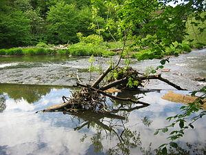 River Esk, Lothian - Image: Esk weir