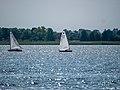 Europe, Saaler Bodden, Ribnitz-Damgarten (P1060727).jpg