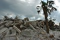FEMA - 13294 - Photograph by Leif Skoogfors taken on 06-22-2005 in Florida.jpg