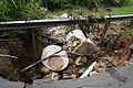 FEMA - 44683 - Storm damage in Puerto Rico.jpg