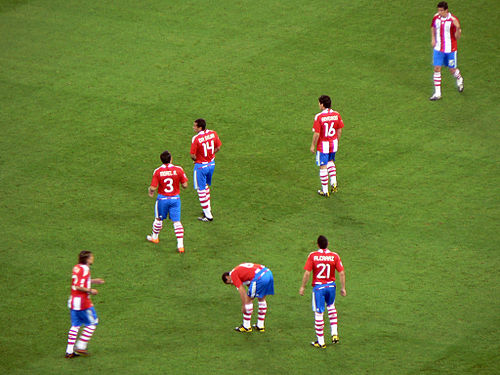The Albirroja vs. Italy on 14 June 2010 FIFA World Cup 2010 Italy Paraguay3.jpg