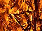 Budizam - Page 6 144px-FIRE_01