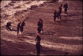 FROGMEN IN SURF - NARA - 543065.tif