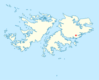 COVID-19 pandemic in the Falkland Islands Ongoing COVID-19 viral pandemic in the Falkland Islands