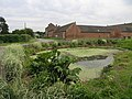 Farm Town Pond - geograph.org.uk - 186827.jpg