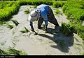 Fars Province 2020 (21).jpg