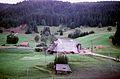 Fermes de la Forêt-Noire Centrale (5).jpg