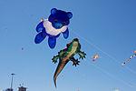 Festival of the Winds (7960184684).jpg