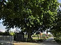 Ffm-Niederursel Sportplatz, Kasse.jpg