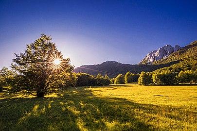 Fields of Velebit.jpg