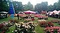 First day of the Rozenfestival Winschoten (2019) 118.jpg