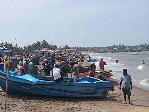 Fischer am Fischmarkt von Negombo