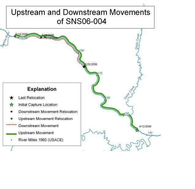 Fish Movements USGS