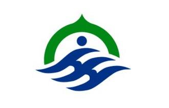 Hōdatsushimizu, Ishikawa - Image: Flag of Hodatsushimizu Ishikawa