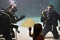 Flickr - Official U.S. Navy Imagery - Navy divers interact with a young visitor..jpg