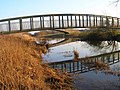 Footbridge over the River Arun - geograph.org.uk - 297348.jpg