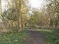 Footpath - geograph.org.uk - 361042.jpg
