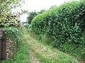 Footpath below the Luppitt Inn - geograph.org.uk - 1364587.jpg