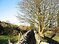 Footpath between Bwlch and Uwchlaw'r Ffynnon - geograph.org.uk - 321251.jpg