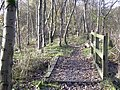 Footpath from New Hall Hey - geograph.org.uk - 1048749.jpg