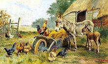 成人和婴儿驴正在处理一只公鸡站在一个充满干草的手推车,十只母鸡,看