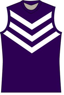 2013 Fremantle Football Club season