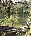 French Gulch dam and reservoir 1 - Jacksonville Oregon.jpg