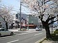 Fukui - panoramio - kcomiida (7).jpg