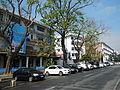 FvfMendiolaStreet701.JPG