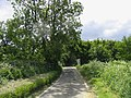 Gang Bridge - near Fyfield - geograph.org.uk - 178878.jpg