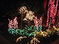 Garden d'Lights 2008 at the Bellevue Botanical Garden, img062.jpg