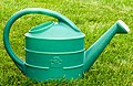 Garden water jug.jpg