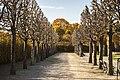 Gardens in Schönbrunn (5).jpg